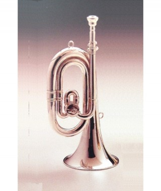 BUGLE C to Db SHORT/silver